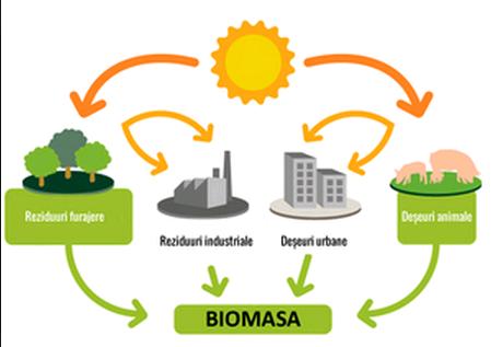 Biomasa – o alternativă de energie verde pentru România